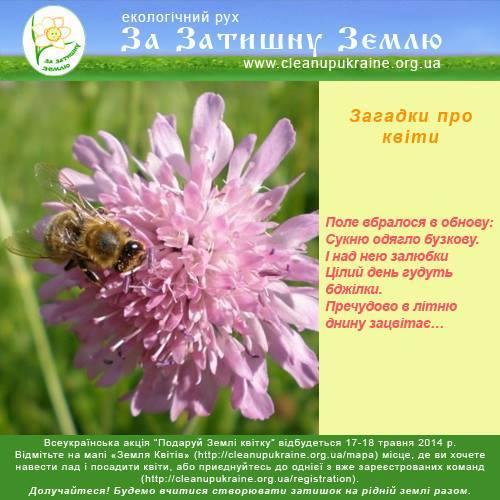 Вольниця shared Сергій Скарбник's photo.