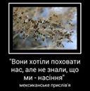 Вольниця shared Наталка Сердюк's photo.